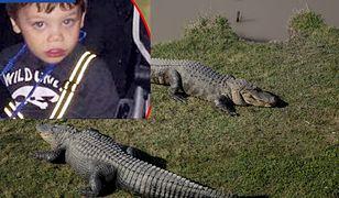 Wstrząsająca relacja ojca 2-latka zabitego przez aligatora