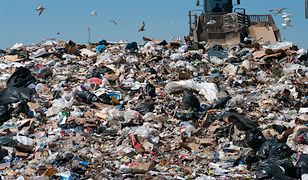 70 proc. odpadów w Polsce stanowią te zmieszane. Europejscy liderzy mają 80 proc., ale zbiórki przeznaczonej do recyklingu.