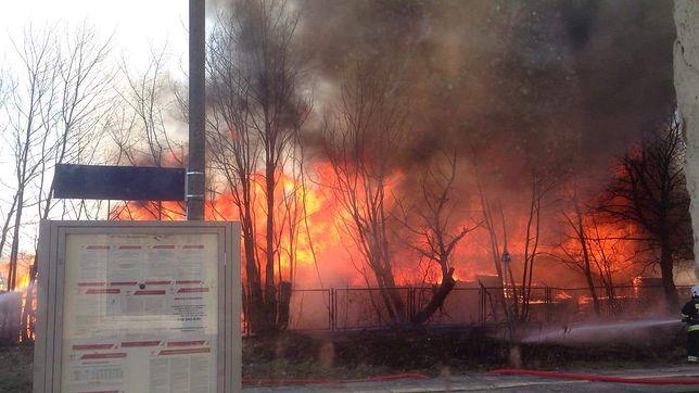 Pożar hali z drewnem