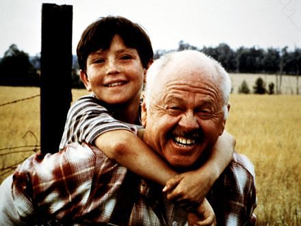 Rodzina kłóci się nad grobem Mickeya Rooneya