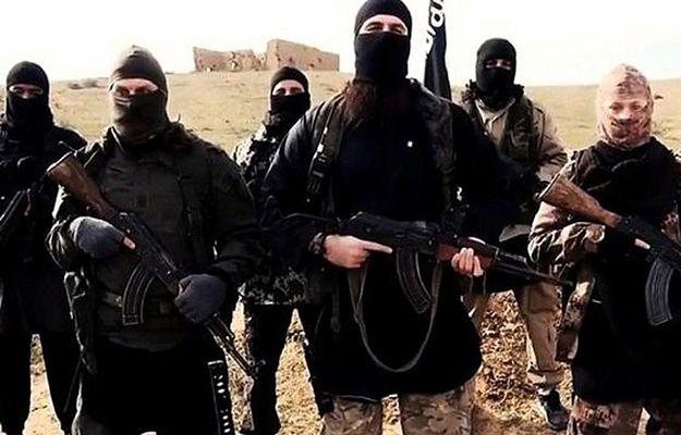 """Tureckie MSZ: należy """"oczyścić"""" z IS turecko-syryjskie pogranicze"""