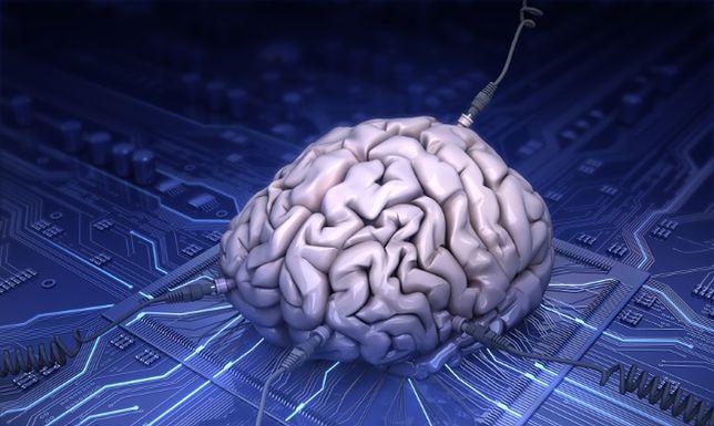 Naukowcy chcą stworzyć inteligencję, bazującą na ludzkim mózgu