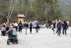 Tatry. Turyści na popularne szlaki dojadą samochodem elektrycznym