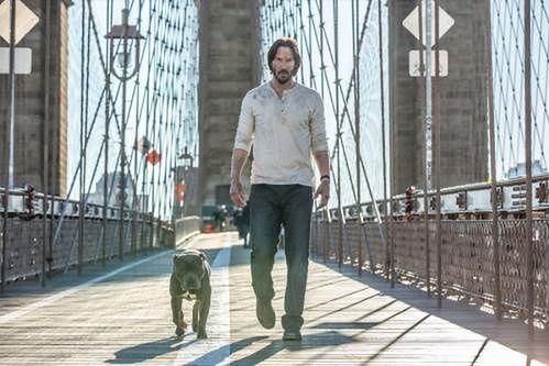 ''John Wick 2'': Keanu Reeves zabije wszystkich