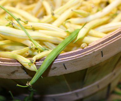 Fasolka szparagowa smakuje nie tylko z masłem i bułką tartą