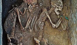 Kobieta pochowana została z drogocenną biżuterią, a mężczyzna z łukiem. Dodatkowo obok nich umieszczono złożone w ofierze dwa konie