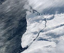 Eksperci alarmują. Padł kolejny rekord temperatury na Antarktydzie