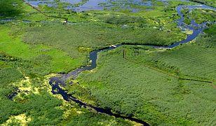 Turystyka wodna w Dolinie Narwi