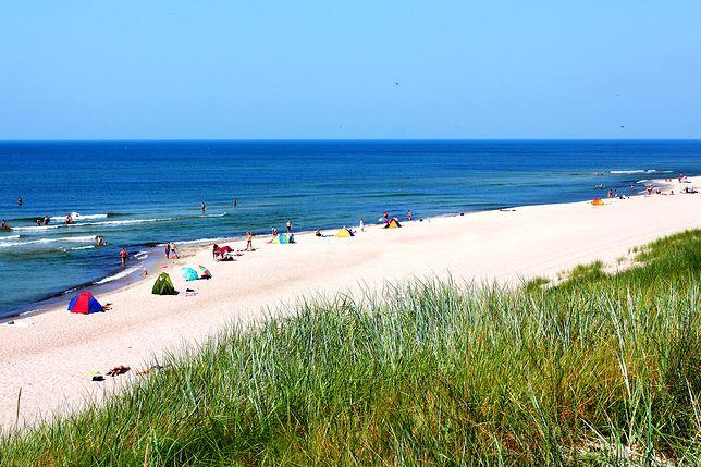 Morze Bałtyckie pełne jest martwych stref