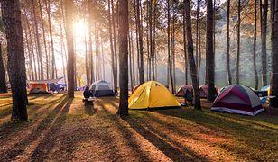 Wakacje pod namiotem. Ile kosztuje urlop na campingu?