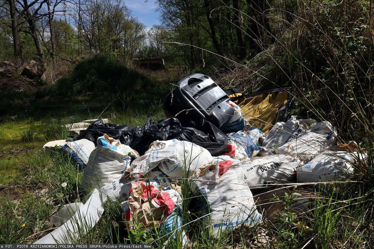 Kara za wyrzucenie śmieci w lesie. Zastanie je przed domem (zdjęcie ilustracyjne)