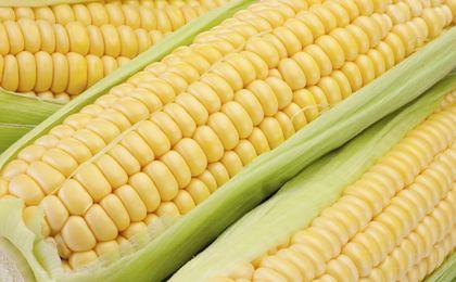 Tygodniowy raport z rynku surowców: Kukurydza - atrakcyjne ceny dla kupujących