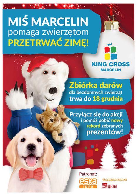"""""""Miś Marcelin pomaga zwierzętom przetrwać zimę!"""" – czyli kolejna edycja zbiórki dla bezdomnych zwierzaków w King Cross Marcelin."""