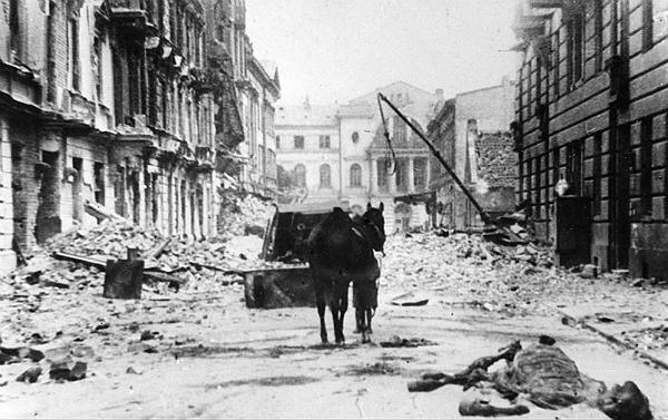 IPN: Polska poniosła największe straty osobowe w II wojnie światowej