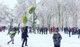 Iran pokryła gruba warstwa śniegu