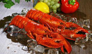 Trzymanie homarów w lodzie to przestępstwo. Kara dla restauratora
