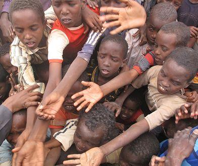 Europę może czekać fala głodów taka jak w dzisiejszym Sudanie.