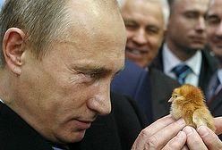 Barczak: sankcje UE wobec Rosji mogą ochłodzić relacje polsko-rosyjskie
