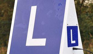 11 osób skazanych ws. korupcji przy egzaminach na prawo jazdy