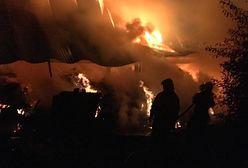 Pożar w Więciórce. Strażacy gasili ogień przez 12 godzin. Wszczęto śledztwo