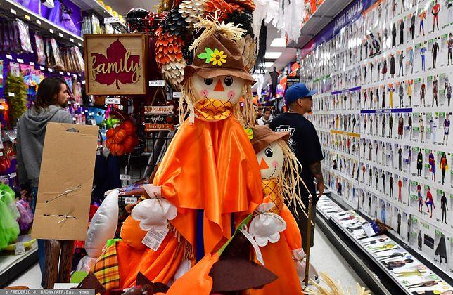 Halloween 2019. Wśród kostiumów, przebrań i dekoracji na Halloween nie może zabraknąć tradycyjnej dyni