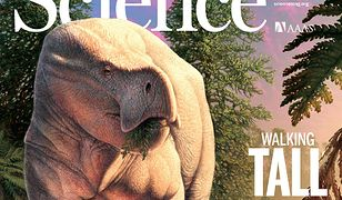 Lisowicia bojani, gad, którego szczątki odkryli polscy paleontolodzy