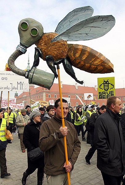 Jeśli pszczoły zginą, ludziom zostaną 4 lata życia