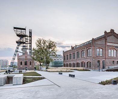 Katowice. Muzeum Śląskie znów otwarte i ma nowego tymczasowego dyrektora
