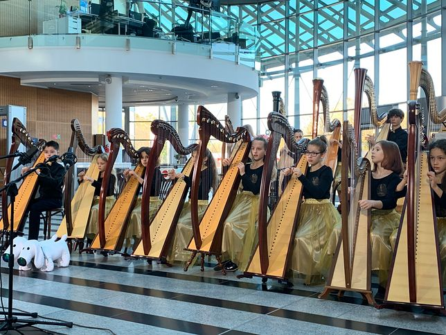 Młodzi harfiści mają szansę wyjechać na święto do Walii