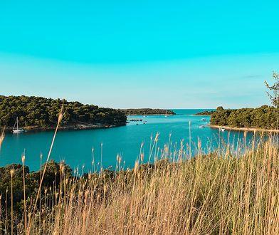 Krajobraz Istrii na północy Chorwacji zachwyca zielenią i błękitem