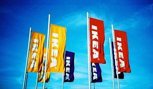IKEA wydłuży pracownikom w USA płatne urlopy rodzicielskie