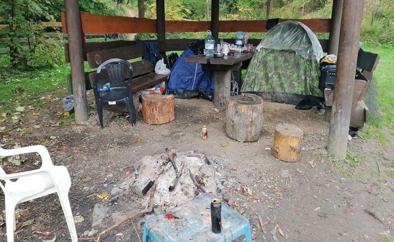 Rumuńscy grzybiarze. Leśnicy pokazali zdjęcie z Podkarpacia