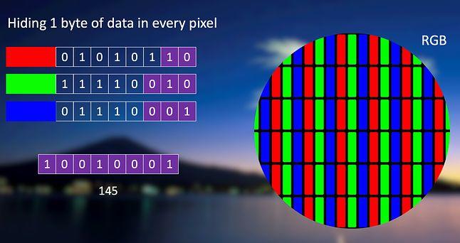 Każdy piksel opisują 3 wartości kolorów składowych. Ostatnie bity tych wartości składają się na bajt danych dla malware'u (ESET, Matthieu Faou)