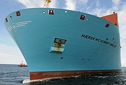 W 2016 roku do portu w Gdyni będą mogły wpływać dłuższe statki