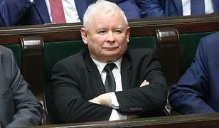 PiS mogłoby liczyć na 244 mandaty w Sejmie