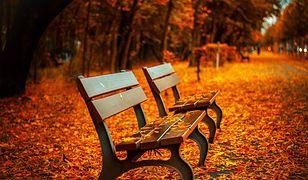 Jesień coraz bliżej. Kiedy zaczyna się astronomiczna i kalendarzowa jesień?