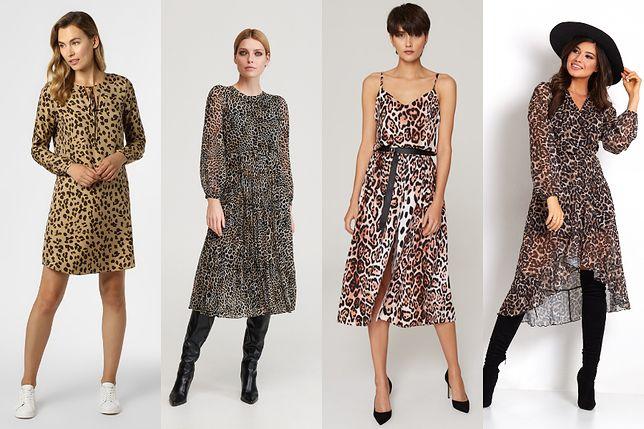 Sukienka w panterkę - z czym ją połączyć, aby stworzyć modną stylizację?