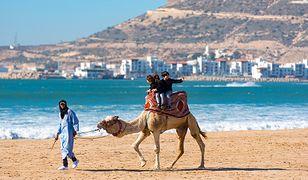 Od Atlantyku po gorącą Saharę. Przygoda w Maroko