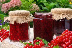 Sposoby na muszki owocówki. Sprawdź, jak się ich pozbyć