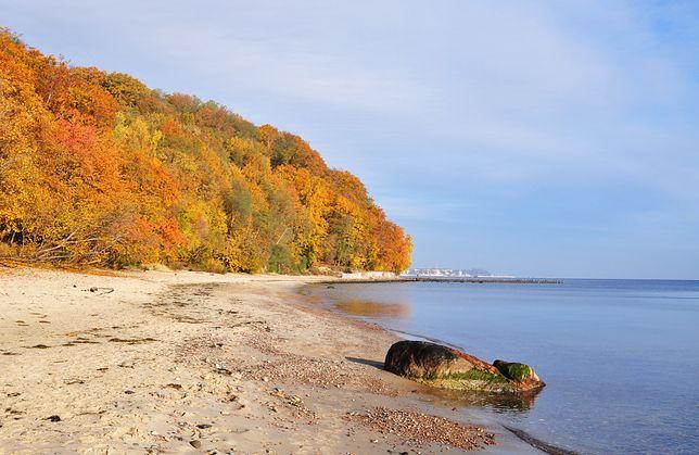 Gdynia jesienią