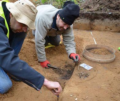 Archeolodzy z Muzeum Twierdzy Kostrzyn przy pracy