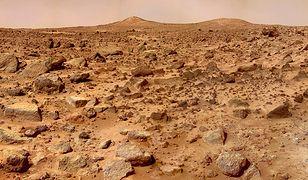 Skały z Marsa są pożądanym obiektem badań.