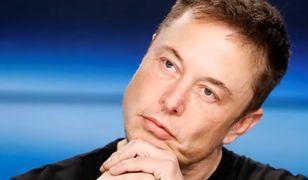 Elon Musk tłumaczy się w sądzie