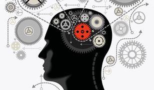 Wyjaśnić umysł. Struktura teorii neurokognitywnych