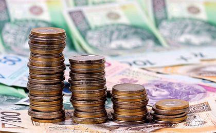 Jak dużo Polska przegra na silnym złotym?