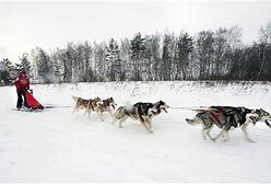 Śnieżny transport