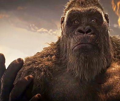 """Streaming stłamsił film. """"Godzilla vs. Kong"""" ponosi klęskę w polskich kinach"""