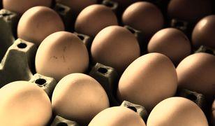 Salmonella w jajach. GIS ostrzega (zdj. ilustracyjne).