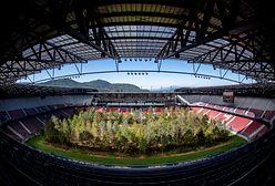 Austriacki stadion piłkarski z lasem na boisku [ZDJĘCIA]