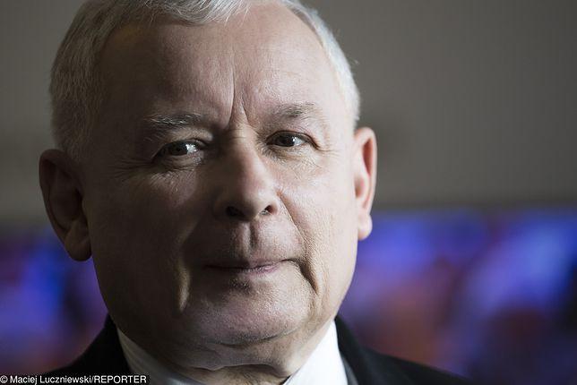 Sondaż. Partia Jarosława Kaczyńskiego wciąż cieszy się największym poparciem